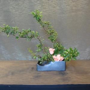 ikebana tyniecka