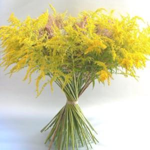 Bukiet z polnych kwiatów