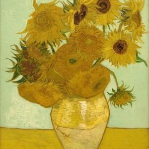 Barwy jesieni: kwiat muśnięty słońcem