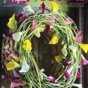 Nowy numer NDiO – Flora