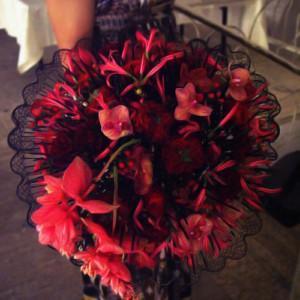 Magiczny świat kwiatów Tomasa de Bruyne