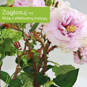 RM Flowers for you kwiaty sztuczne