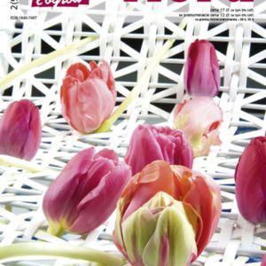 Wiosenne wydanie NDiO - Flora