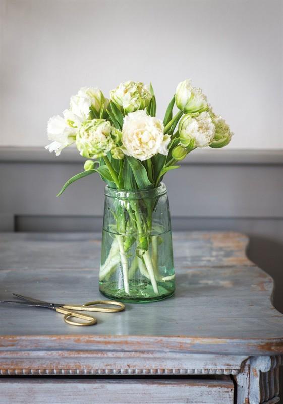 kwiaty cebulowe jak dbać