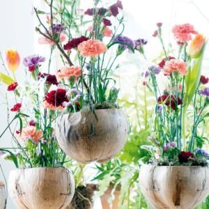 Różnorodność tematów w letnim numerze NDiO-Flora
