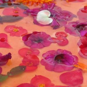 Kwiaty dla oka i podniebienia