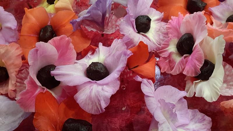 jastrząbki kwiaty jadalne
