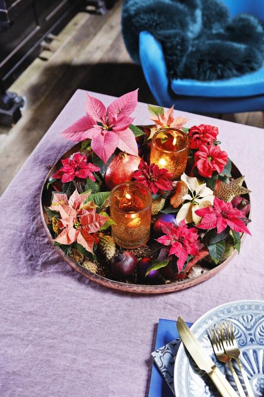 dekoracje z gwiazdą betlejemską