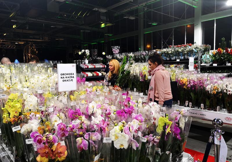 Jmp Flowers Otwiera Filie W Bialymstoku Forumkwiatowe Pl