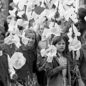 O historii i reaktywacji Wrocławskiego Święta Kwiatów