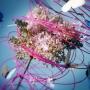 Kompozycje kwiatowe florystów z Floral Fundamentals