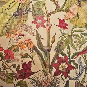 Przepiękna wystawa dawnych ilustracji botanicznych.Po prostu musisz ją zobaczyć!