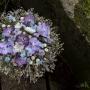 Ulviya Akhmedova, Floral Fundamentals inicjatywa Home Stay