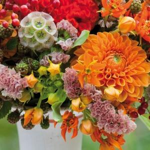 Poznajmy symboliczne znaczenie kwiatów
