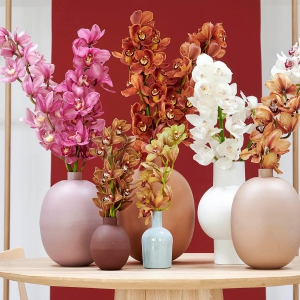 kolekcja kwiatow
