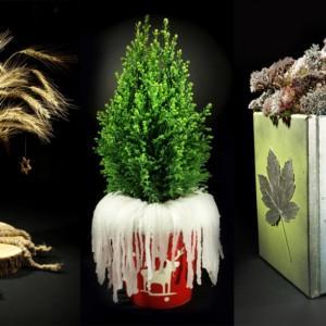 Adwent i Święta we (florystycznym) obiektywie