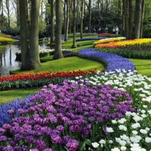 Ogrody Sanssouci i Keukenhof 8 cud świata – wycieczka