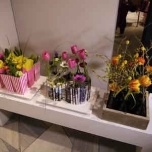 VII Wystawa Tulipanów w Muzeum Pałacu w Wilanowie
