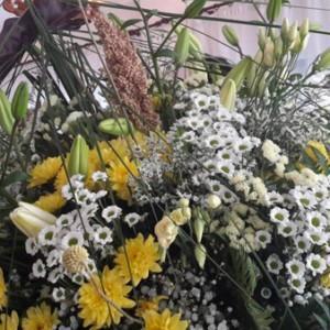 Lato kwiatów w Otmuchowie