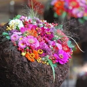Czas kwiatów - Flowertime