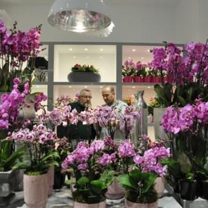 Kwiaciarnia - zabawa czy biznes?