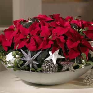 3 pomysły na zimową dekorację