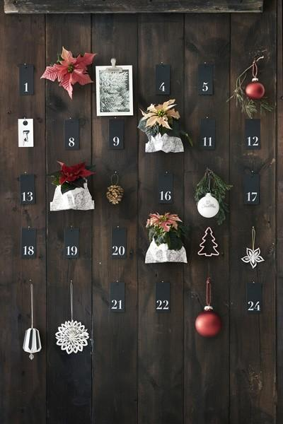 2016-poinsecja-kalendarz-adwentowy-01-pl