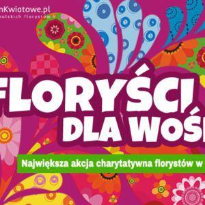 Floryści dla WOŚP 2017