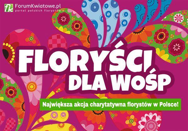 florysci-dla-wosp-2017
