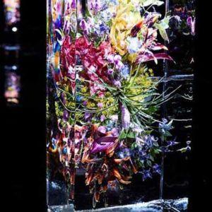 Żywe kwiaty zamknięte w lodzie