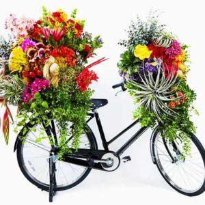 Flota kwiatowych rowerów zdobywa São Paulo