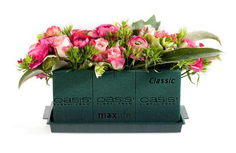 Oasis Classic gąbka florystyczna