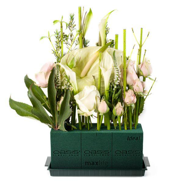 Oasis Ideal gąbka florystyczna