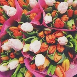 kwiaciarnia wystrój