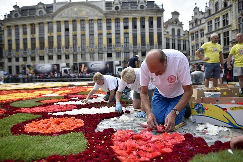 Dywan Kwiatowy, Bruksela