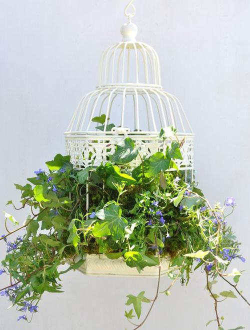 dekoracje kwiatowe w klatkach
