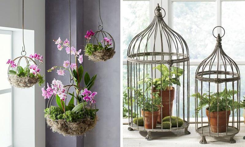 kwiatowe dekoracje w klatkach