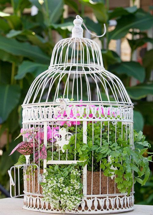 dekoracje kwiatowe w klatce