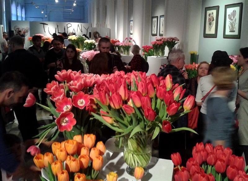 IX Wystawa Tulipanów w Wilanowie