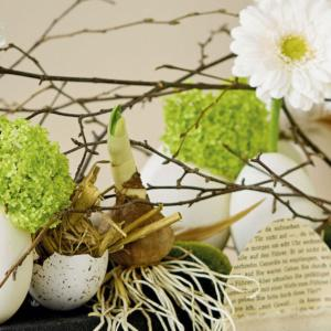 Wiosna z NDiO-Flora