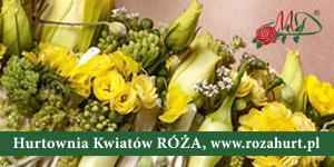 Hurtownia Kwiatów Róża