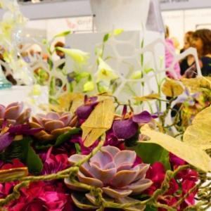 Targi FLOWER EXPO POLSKA – zielony styl życia