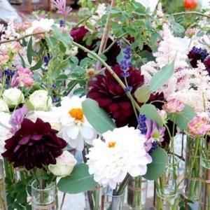 Florystyka na wrocławskim rynku