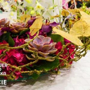 Flower Expo Polska & Zieleń to Życie - najciekawsze punkty programu targów