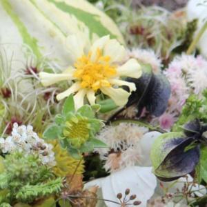 jesienna kompozycja z kwiatów