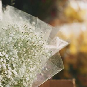 Czy musisz zarejestrować kwiaciarnię w BDO do końca roku?
