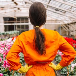 Koronawirus a branża kwiatowa. Czy rząd wesprze małe przedsiębiorstwa?