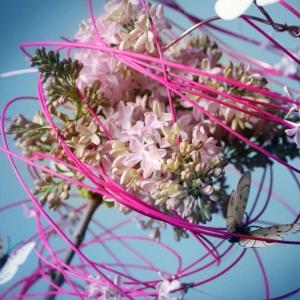 wiosenne kompozycje florystyczne