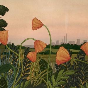 """""""Story of Flowers, niesamowita animacja o życiu i śmierci roślin. Idealna dla Twojego dziecka!"""