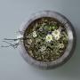 Olga Sharowa, Floral Fundamentals inicjatywa Home Stay